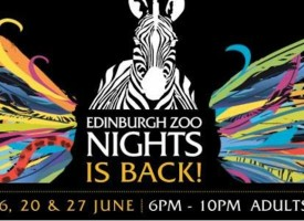 Join the nights owls at the award winning Edinburgh Zoo Nights