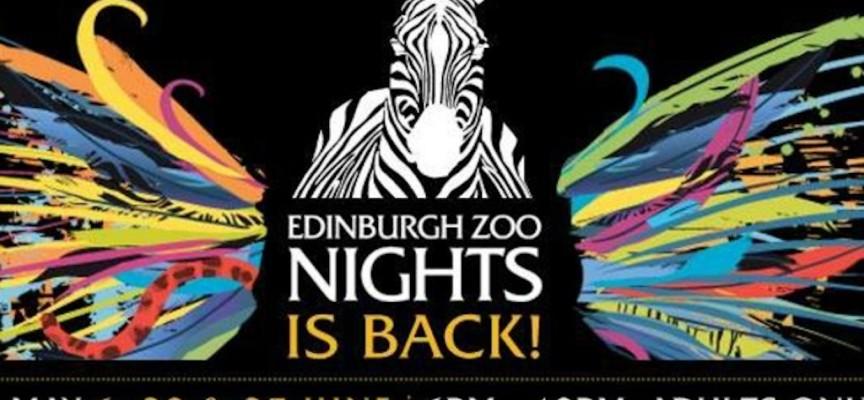 Join the nights owls at the award winning Edinburgh Zoo Nights