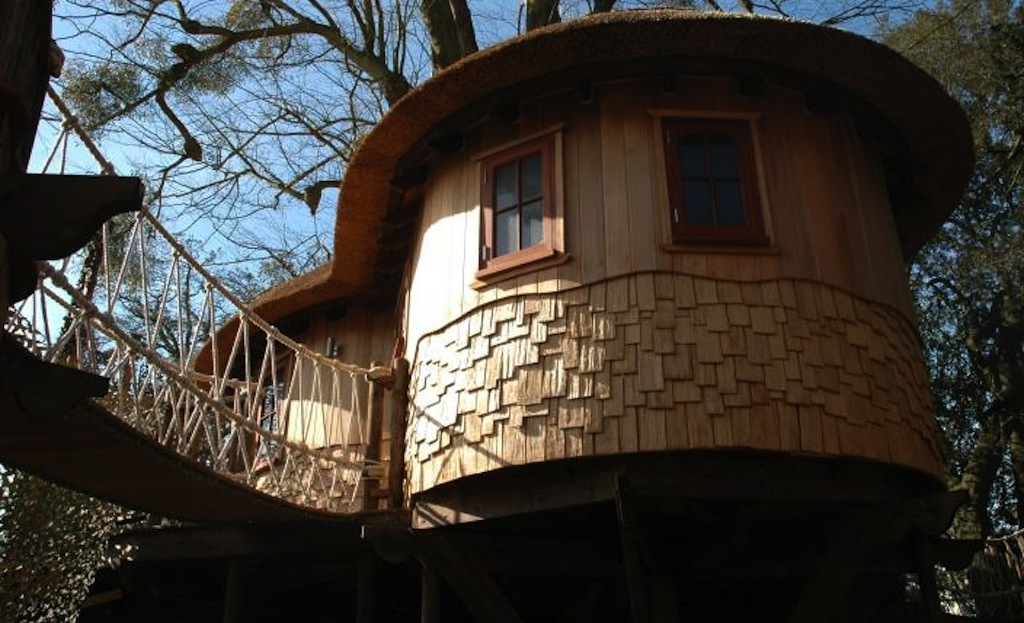 Cool Treehouse From Blue Forest Design Avocado Sweet