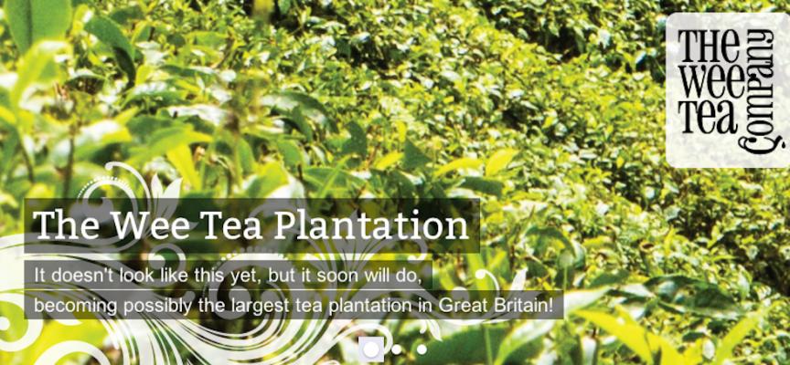 The Wee Tea Company, Dunfermline, Fife