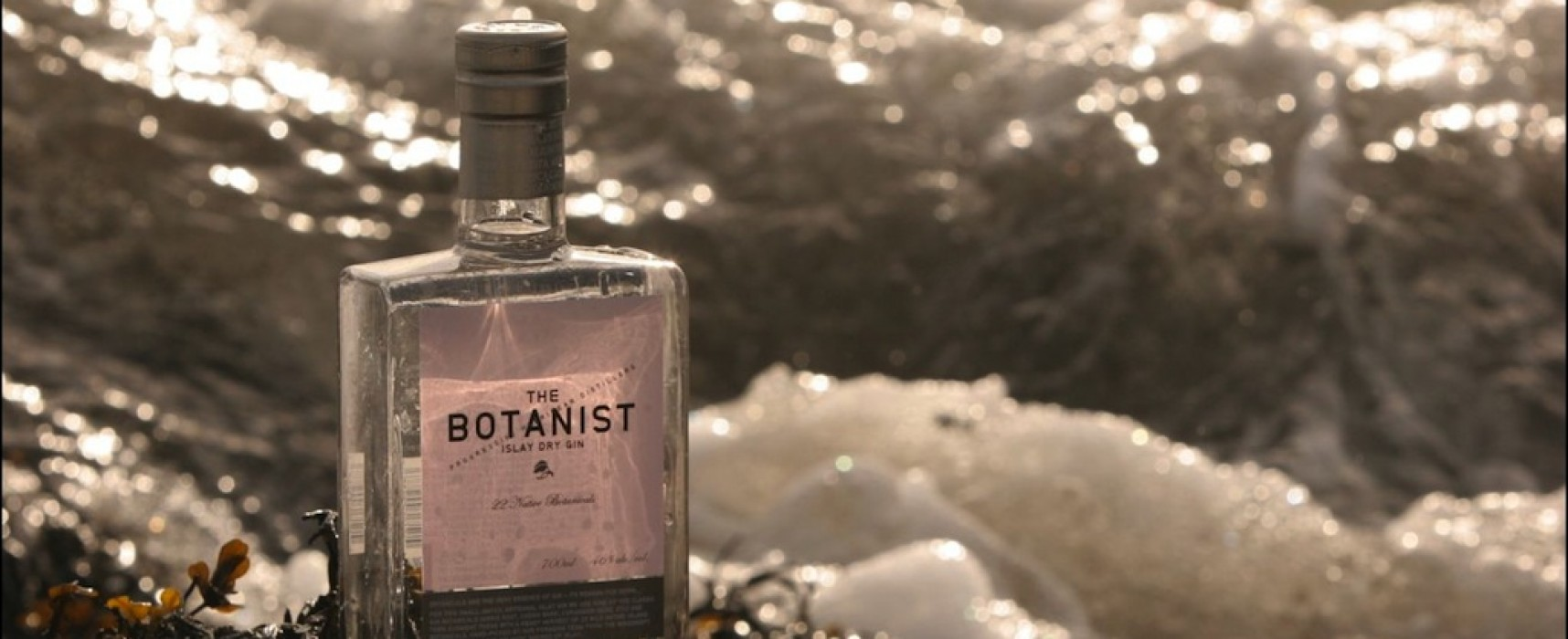 Islay and french gin; the latest on gin by Paul, Reuben's Wine store