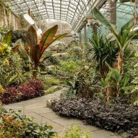 People in Glasshouses: Pittencrieff Park spruced up for spring