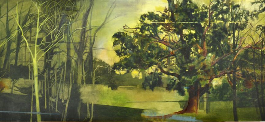 Nerine Tassie's first solo show opens in Perth