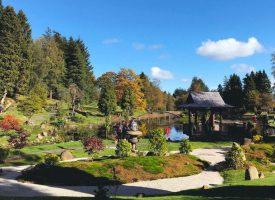 Japanese garden, Dollar inspires Culross exhibition